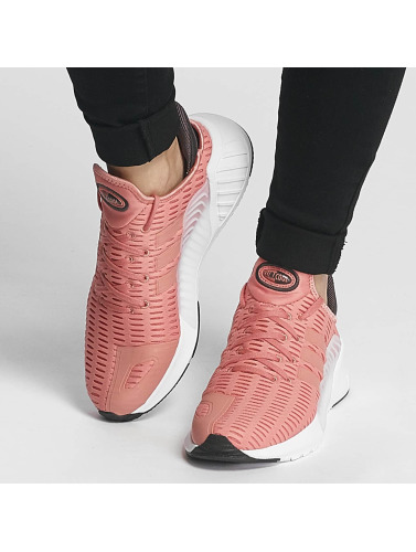adidas originals Damen Sneaker Climacool 02/17 in rosa