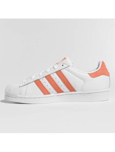 Adidas Originals Women Sneaker Superstar In White