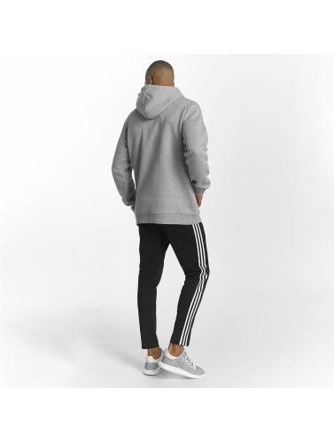 originals Trefoil in Hombres Sudadera adidas gris Cfa7dRqqW