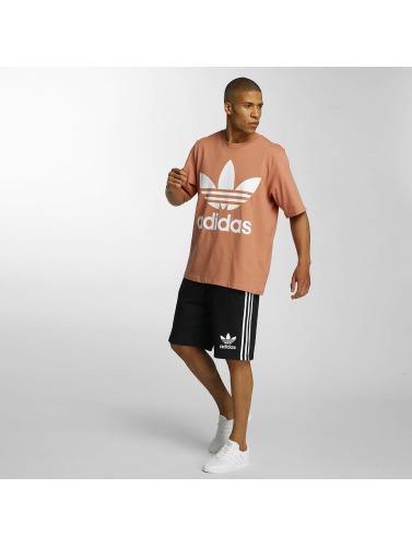 adidas originals Herren T-Shirt AC Boxy in rosa