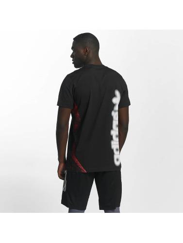 adidas originals Herren T-Shirt Archive Catalog in schwarz