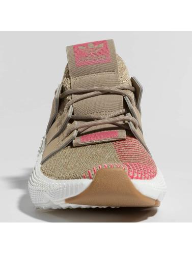 Adidas Originals Joggesko Kvinner I Khaki Prophere klaring billig real 100% opprinnelige salg butikk for FhOKl
