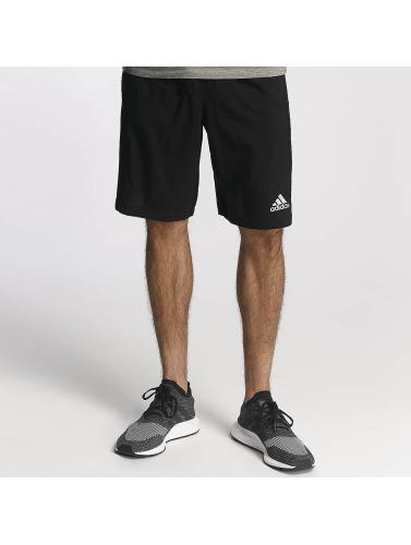 adidas Performance Herren Shorts D2M in schwarz