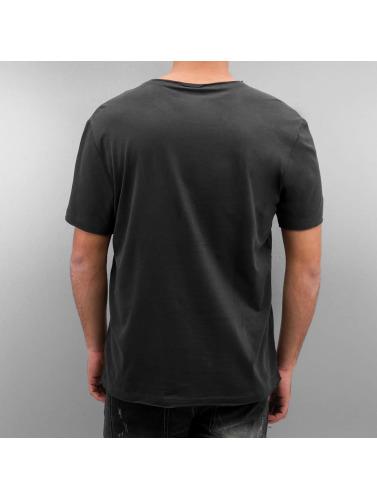 Amplified Herren T-Shirt AC DC Logo in grau