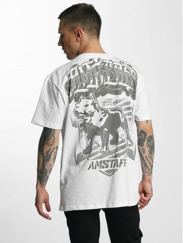 Amstaff Herren T-Shirt Tylos in weiß