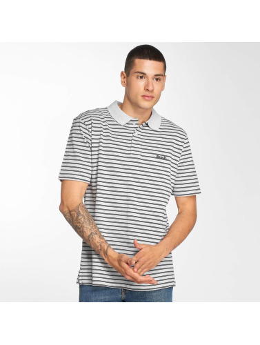 Bench Hombres Camiseta polo Y/D Stripe in gris