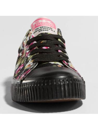 British Knights Damen Sneaker Master Lo in schwarz