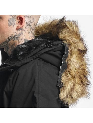 Carhartt WIP Herren Winterjacke Trapper in schwarz