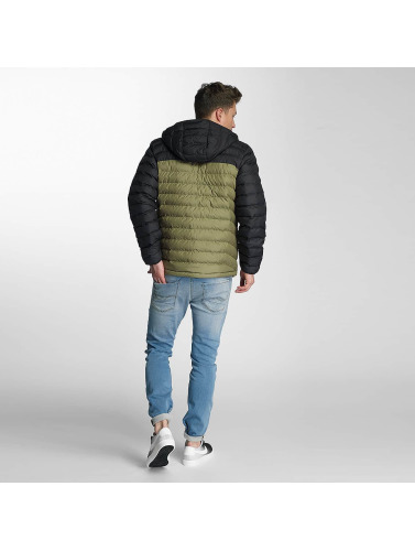 Columbia Herren Winterjacke Powder Lite in grün