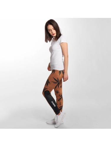 Farlige Dngrs Mujeres Legging / Tregging Weedo I Marrón sneakernews billig online rabatt real lør bilder til salgs salg billigste pris cf8Fx