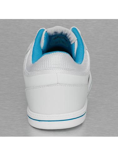 Dangerous DNGRS Herren Sneaker Logo II in weiß