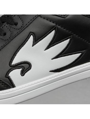 Dangerous DNGRS Hombres Zapatillas de deporte Logo II in negro