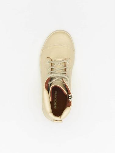 DC Damen Boots Amnesti TX SE in beige