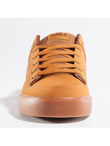 DC Herren Sneaker Pure in braun