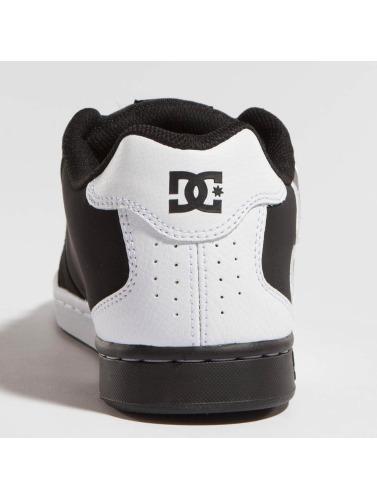 DC Hombres Zapatillas de deporte Net Se in negro