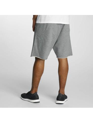 Devilsfruit Herren Shorts Turn UP in grau