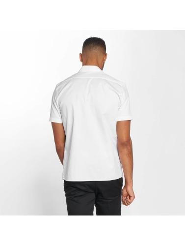 Dickies Hombres Camisa Rotonda South in blanco