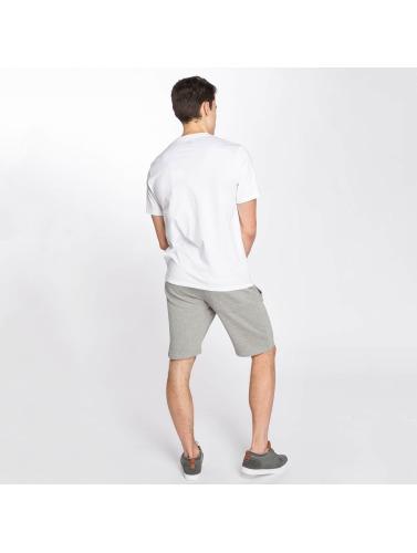 Dickies Hombres Camiseta Lumberton in blanco