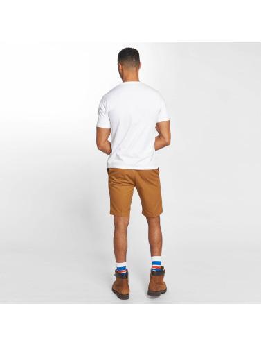 Dickies Hombres Camiseta Old Ocean in blanco