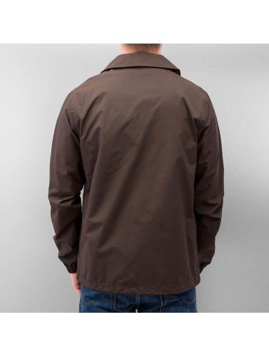 Dickies Hombres Chaqueta de entretiempo Torrance in marrón