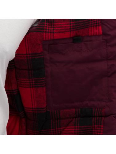 Dickies Hombres Chaqueta de invierno Cornwell in rojo
