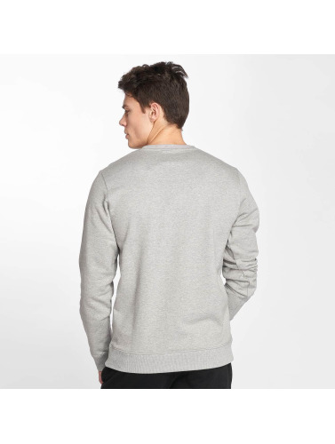 Dickies Hombres Jersey Springlake in gris