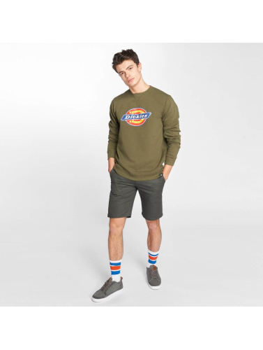 Dickies Hombres Jersey Harrison in oliva