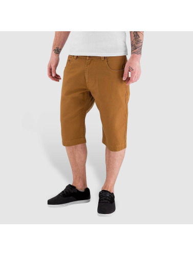 Dickies Herren Shorts Alamo in braun