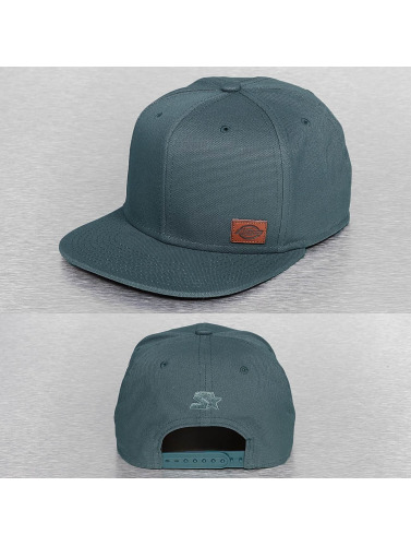 Dickies Snapback Cap Minnesota in grau