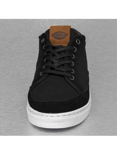 Dickies Herren Sneaker New Jersey in schwarz Verkauf Gut Verkaufen Verkaufsqualität byBDijcOfb