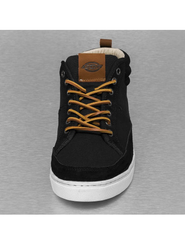 Dickies Herren Sneaker Connecticut in schwarz