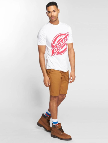 Dickies Herren T-Shirt Johnson City in weiß