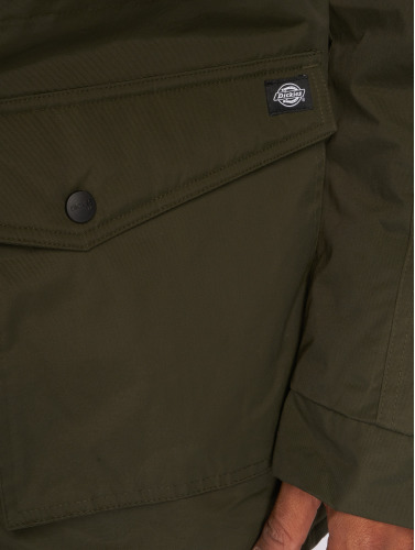 Dickies Herren Winterjacke Curtis in olive