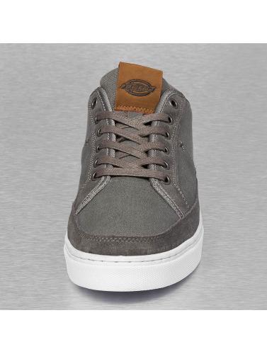 Dickies Hombres Zapatillas de deporte New Jersey in gris
