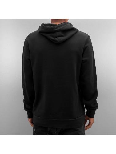 Etnies Herren Hoody Icon P/O in schwarz
