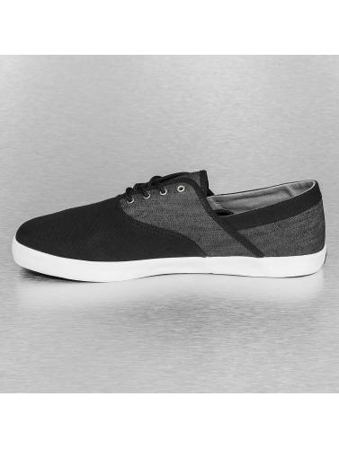 Etnies Herren Sneaker Corby in schwarz