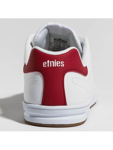 Etnies Hombres Zapatillas de deporte Callicut LS in blanco