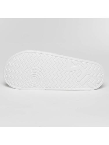 Rad Kvinners Flip Flops / Sandaler Basert Palm Beach I Hvitt billig salg fasjonable MvrVb0