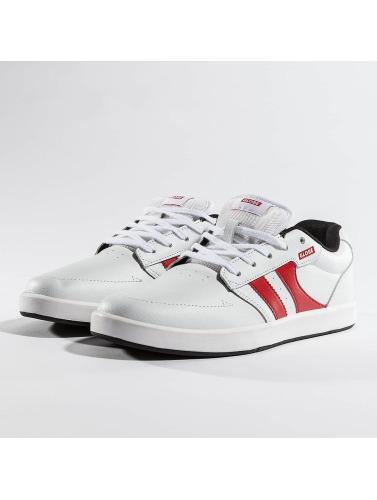 Globe Herren Sneaker Octave in weiß