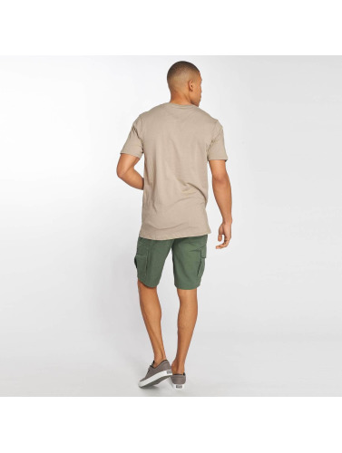 Globe Herren T-Shirt Box in beige