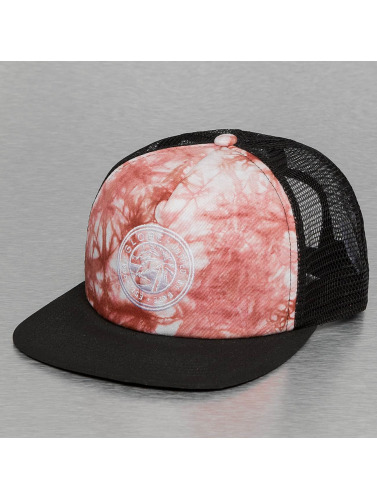 Globe Trucker Cap Roycroft in rot