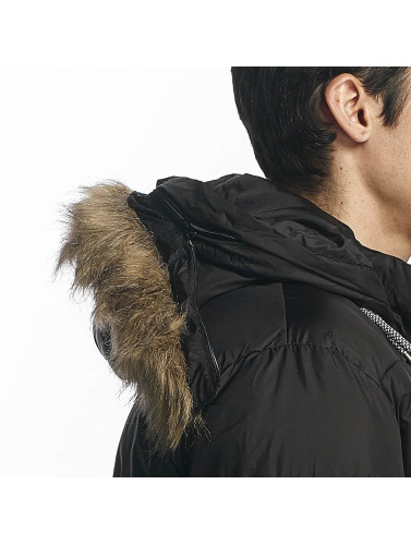 HYPE Herren Winterjacke Explorer Puffa in schwarz