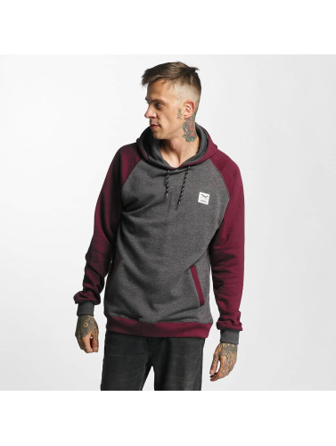 Iriedaily Herren Hoody Rugged in grau