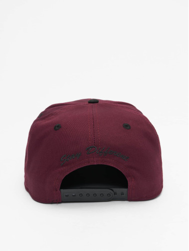 Iriedaily Snapback Cap Daily Flag 2 in rot