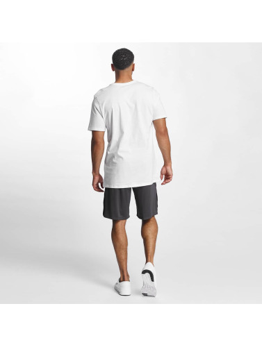 Jordan Herren Shorts 23 Tech Dry in grau
