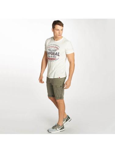 Kaporal Herren Shorts Jeans in grün