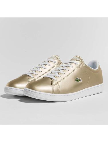 Lacoste Damen Sneaker Carnaby Evo in goldfarben