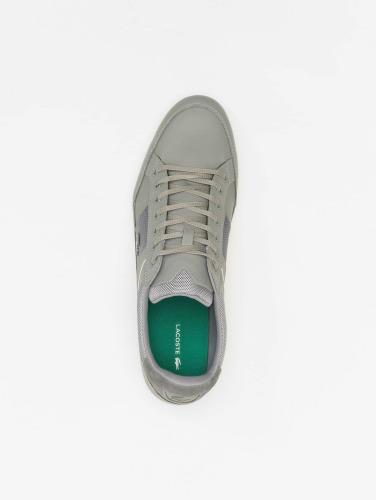 Lacoste Herren Sneaker Chaymon 116 1 SPM in grau