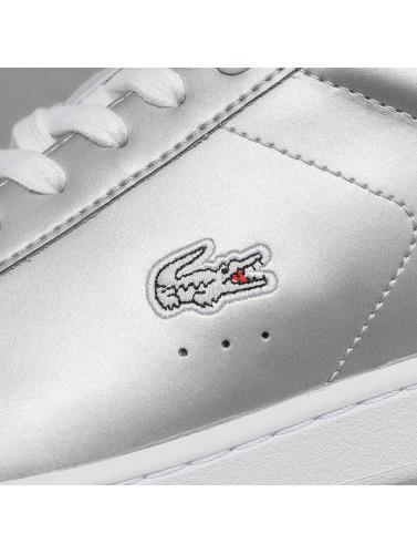 Lacoste Damen Sneaker Carnaby Evo 117 3 SPW in grau