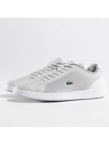Lacoste Men Sneaker Endliner 217 In Gray